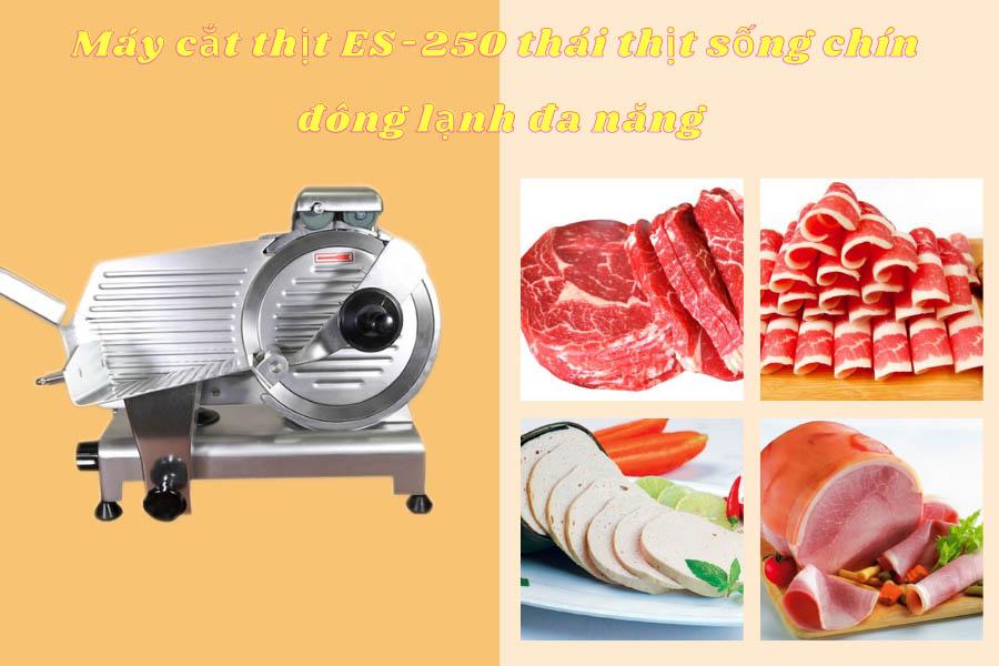 may-cat-thit-es-250-thai-thit-song-chin-dong-lanh-da-nang