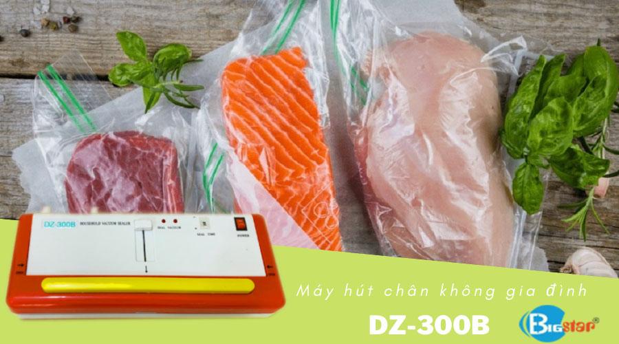 May-hut-chan-khong-DZ-300B